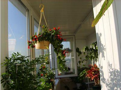 интерьер лоджии балкона