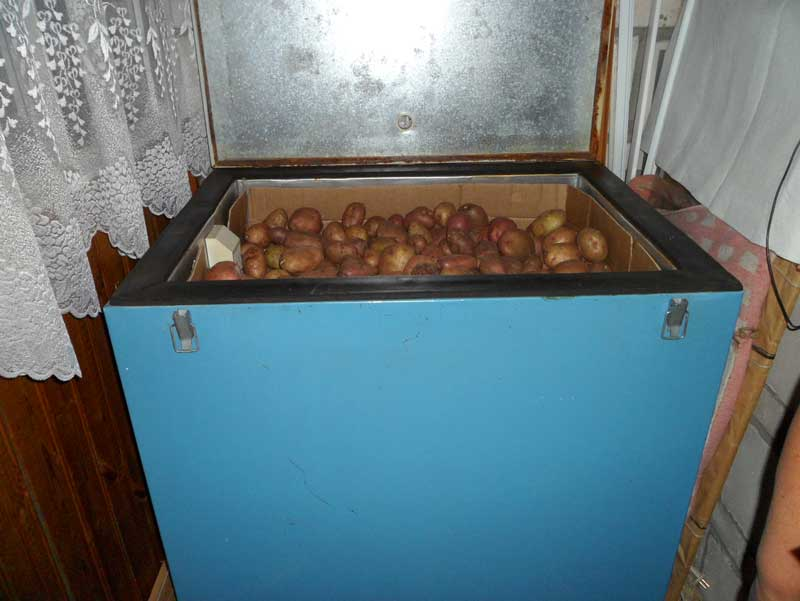 как хранить на балконе картофель