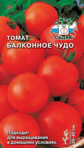 комнатные помидоры балконное чудо