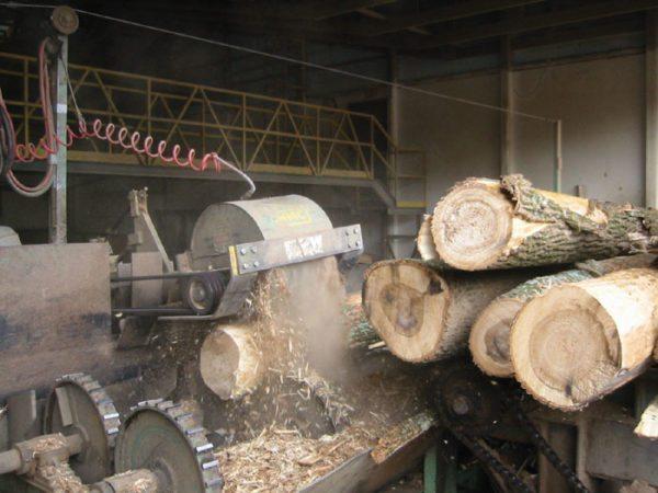 Перед расщеплением с дерева обязательно сдирается кора