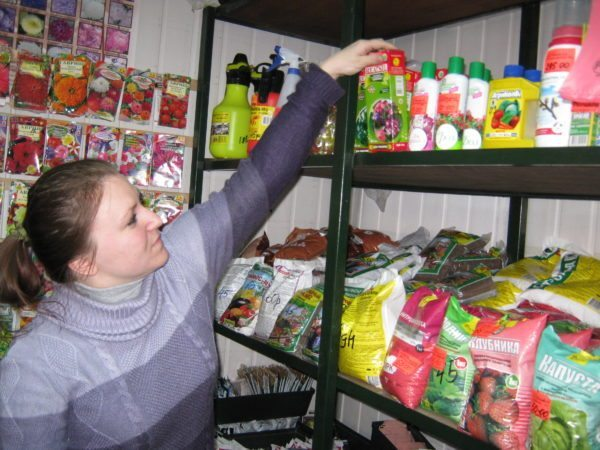 В сельскохозяйственном магазине вы сможете найти нужные для подкормки домашней клубники удобрения