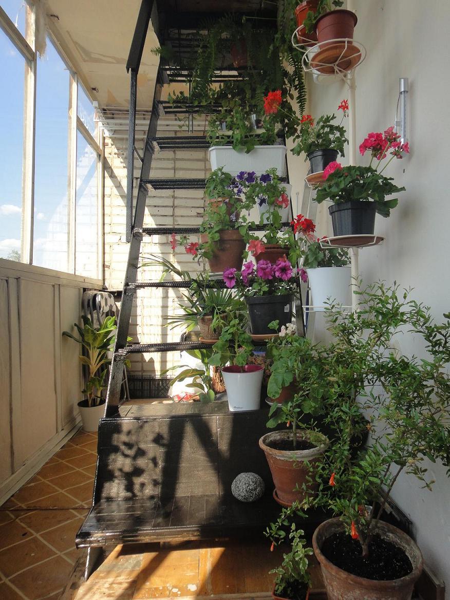 Застекленный балкон с пожарной лестницей