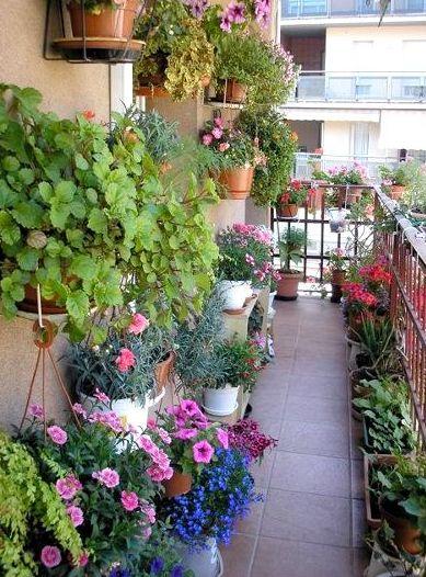 Создать необыкновенный цветник на балконе совсем не сложно, все в ваших руках