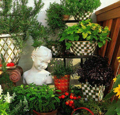 Восхитительный цветник на лоджии из комнатных растений