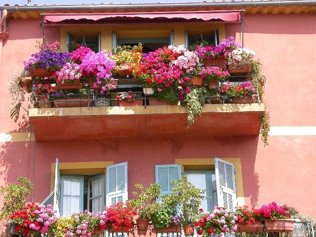 Прекрасный вид цветущего балкона