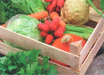 Ящики для хранения овощей в зимнее время уже давно никто не использует