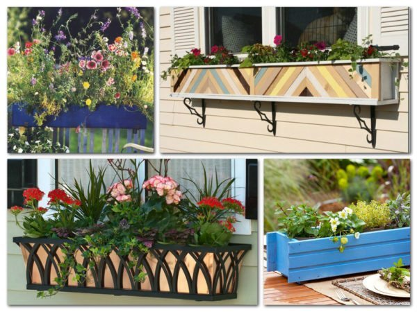 Короба для цветов можно уложить на пол или, используя специальные крепления, повесить за окном