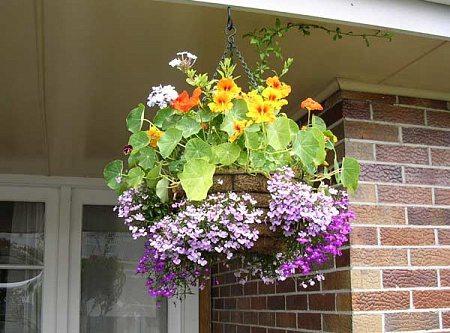 Кашпо для подвесных цветов своими руками