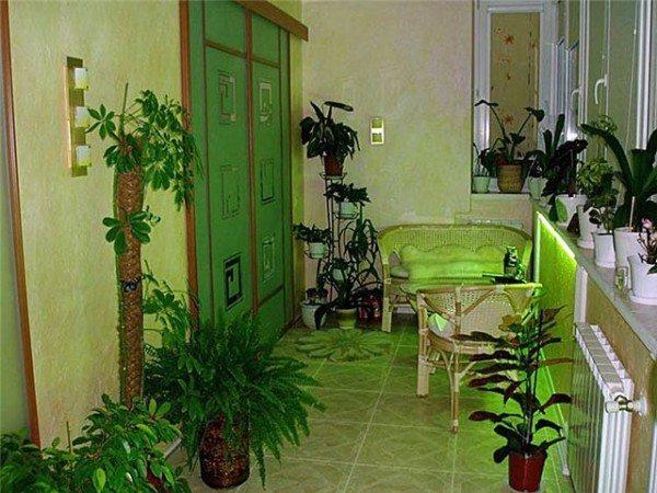 Зеленый сад на лоджии